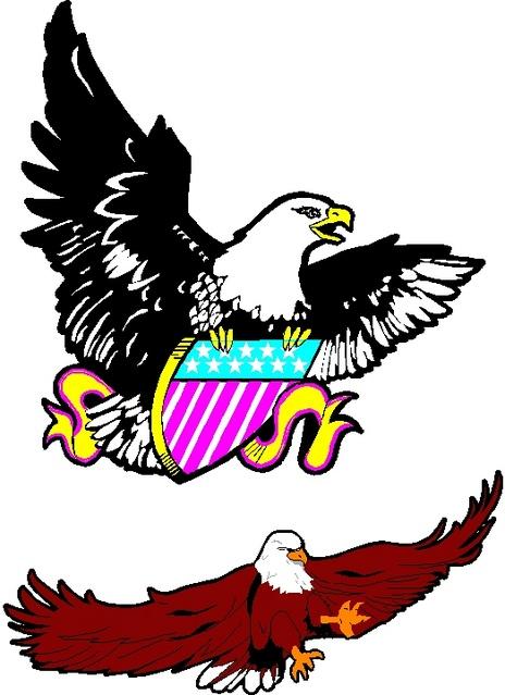 464_Eagle