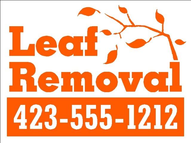 640_Leaf_Removal