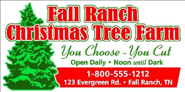 640_Tree_Farm